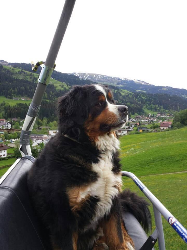 Bräu Wirt Kirchberg Tirol aufi zu...